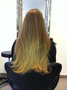 T&D Cheveux Longs